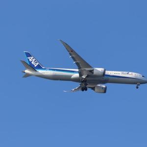 全日空 B787-9(JA885A)