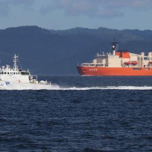 砕氷艦「しらせ」、浦賀水道北上