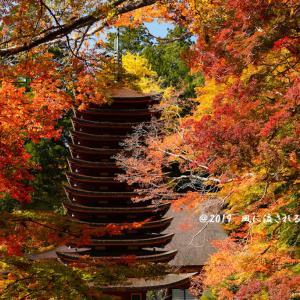 奈良・談山神社 彩り豊かな十三重塔(2019年11月17日撮影)