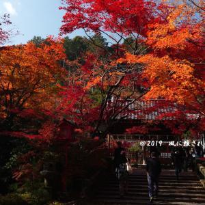 京都府亀岡 鍬山神社 紅葉