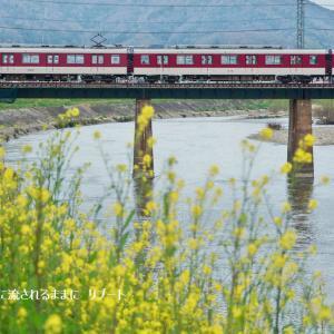 奈良・三郷町 菜の花と近鉄電車(3月22日撮影)