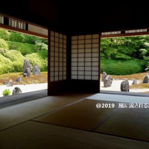 京都・光明院 新緑の波心庭
