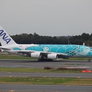 """10月下旬その1②(ANAのA380-800""""フライング・ホヌ2号機"""")"""