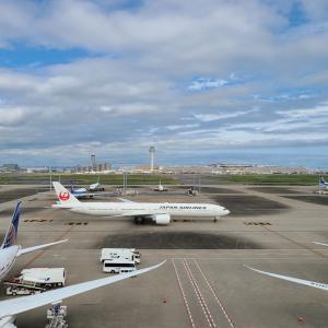 9月末⑫(JALのB777-300ER)