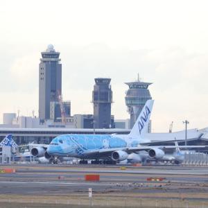 """12月中旬その2⑳(ANAのA380-800""""フライング・ホヌ1号機"""")"""