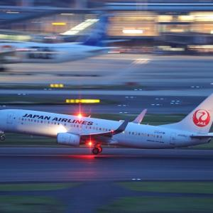 5月初旬その2⑫(JALのB737-800)