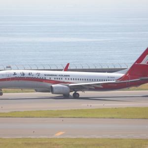 6月初旬その1⑪(上海航空のB737-800)
