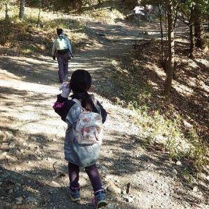 再び子供たちと五月山にハイキングに行ってきました!