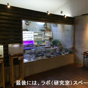 多種類のカエルを環境とともに展示・体感型カエル館Kawazoo