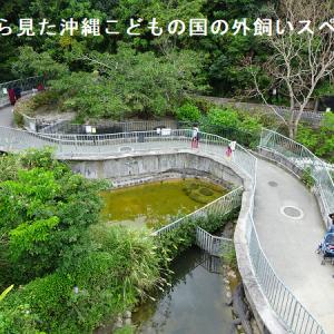 名前から想像できない隠れた爬虫類スポット、沖縄こどもの国