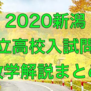【無料公開】2020新潟県公立高校入試問題数学解説まとめ