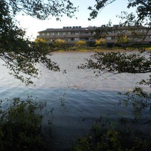 10月13日 台風後のびん沼・丸堀