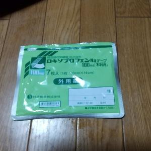 筋トレ禁止令( ;´・ω・`)