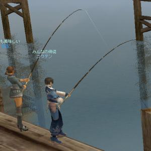 困ったら釣る日常は変わらず