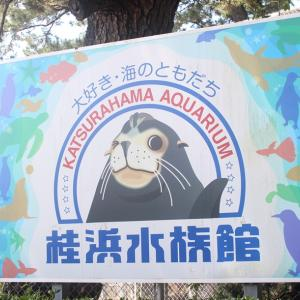 高知で水族館~「桂浜水族館」アットホームでこぢんまり。いろんなショーやってるよ<前編>
