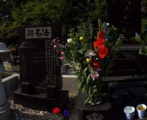 お彼岸のお墓参りに行ってきました。