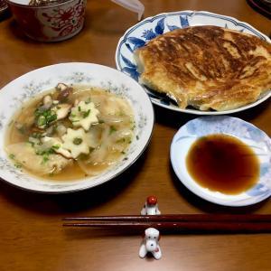 483 羽つき餃子とワンタン玉ねぎスープ