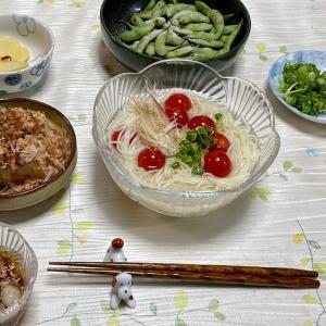 667 猛暑の日は,冷麦で夕ご飯。