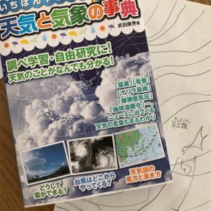 夢は気象予報士☀️