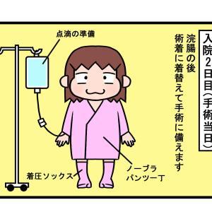 27周期目 入院2日目②~麻酔医とのお話~