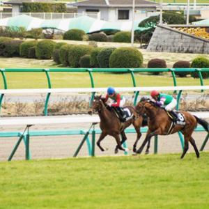 【衝撃】障害レースで落馬対応中の職員に2周目の馬が突っ込む事故