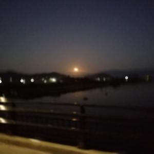 琵琶湖の北湖を一周2回目‼️