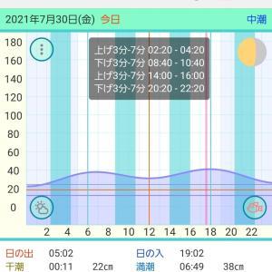 2021/07/30 若狭湾のイカメタル@新漁丸