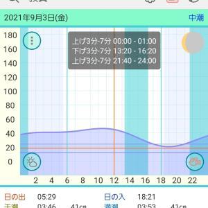 2021/09/03      福井のイカメタル@新漁丸