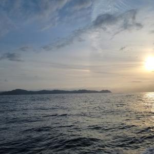 2021/09/25   若狭湾のアオリイカ@新漁丸