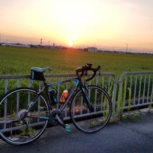 朝チャリからの若狭湾のイカメタル Round.5@新漁丸
