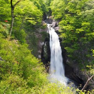 トレイルランで訪れた滝つぼで発生した事故【山岳事故】