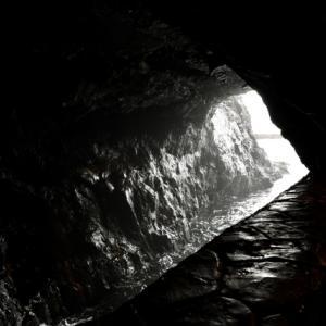 ハイキング中に見つけた洞窟の中に・・熊!!