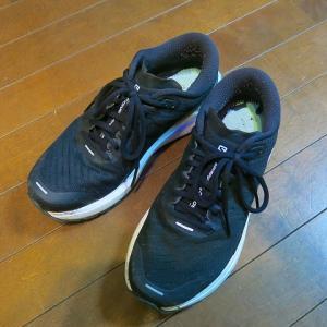 500キロ走ってレビュー!サロモンのランニングシューズ SONIC3 Confidence