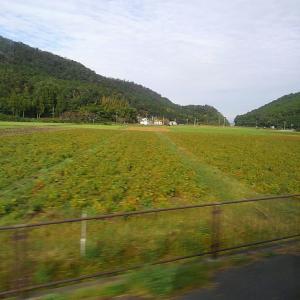 スタジオと滋賀県の旅