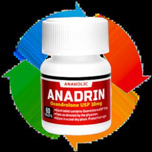 アナドリン|の筋肉に効果的なサイクル方法まとめ