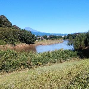台風19号による狩野川 被害を受けて