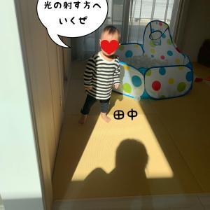 田中 vs 太陽