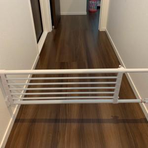 【聞こえてるか、室井さん】リビング階段を封鎖せよ!!