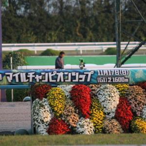 【現地観戦】マイルチャンピオンシップ2019 京都競馬場