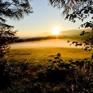 人口約3,400人の小さな町が環境未来都市?北海道の森と生きる街