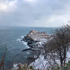 【小樽】 青塚食堂|海鮮料理・魚介料理