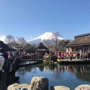 【忍野八海】ろばた料理 山麓園 ほうとう 富士吉田