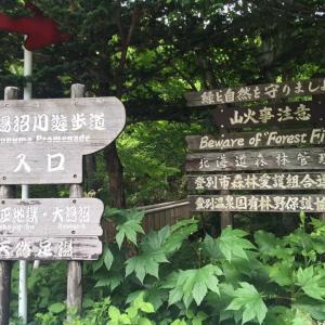 【登別】 大湯沼川 天然足湯