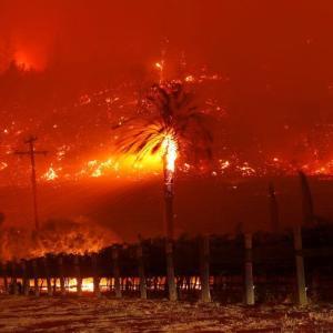速報【カリフォルニア】 米ワイン産地ナパバレーでも山火事拡大