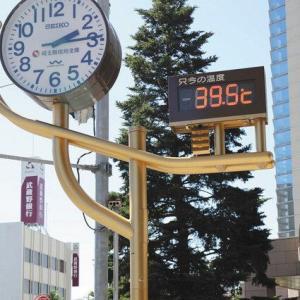 新潟県の三条市で39.1度 各地で猛暑日