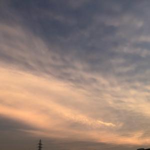 海のデトックスパワー(恩納村 ナビービーチ)