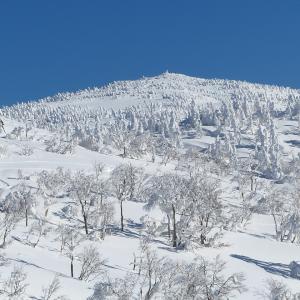 リアルクエスト森吉山 深雪のスノーモンスターに会いに行ってきた!