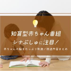 シナぷしゅに注目!新赤ちゃん番組の監修は『もいもい』で有名な東京大学赤ちゃんラボ