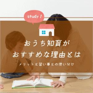 おうち知育の良さは安心感と学びのスタイル!幼児教室とはどう使い分ける?