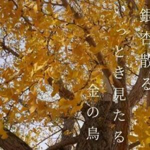 若き日の銀杏落葉の栞かな
